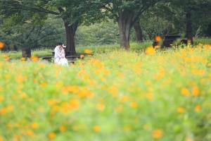 花畑や新緑が魅力な『葛西臨海公園』