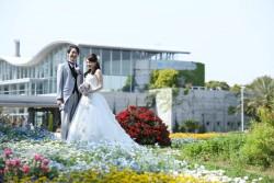 1年中お花畑での撮影‼三陽メディアフラワーミュージアム