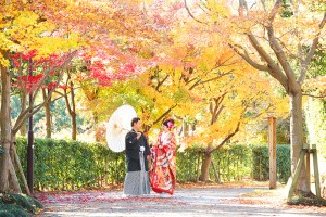 <center>季節感が感じられる 「柏の葉公園」</center>