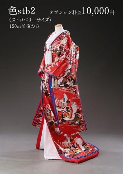市川店/色打掛 stb-2
