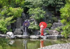 足立区にある桜花亭。新緑やインパクトのある滝が魅力的。