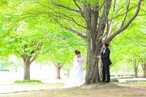 <center>☆花と芝生の広場☆「21世紀の森公園」</center>