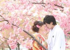 Wedding Story松戸店の和装ロケーションプランです。
