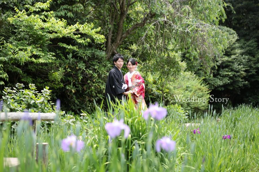 菖蒲が咲き始めた三溪園での前撮り